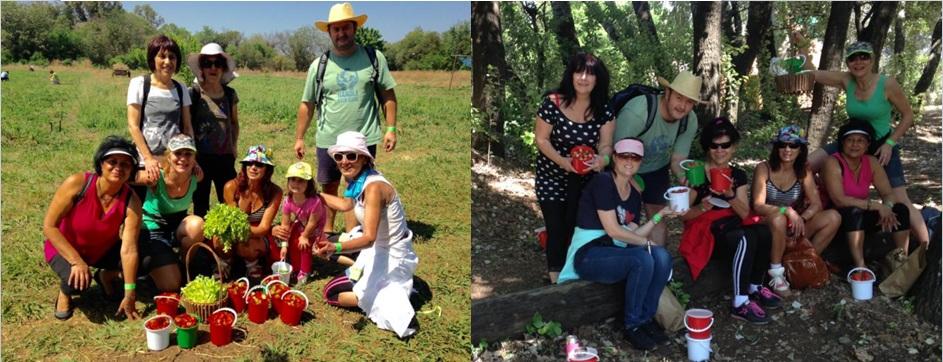 strawbery-hike